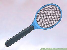 Resolva de fez como eliminar as moscas de sua moradia